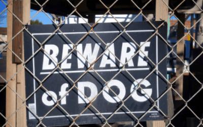 Dogs Attack Georgia Girl Unprovoked